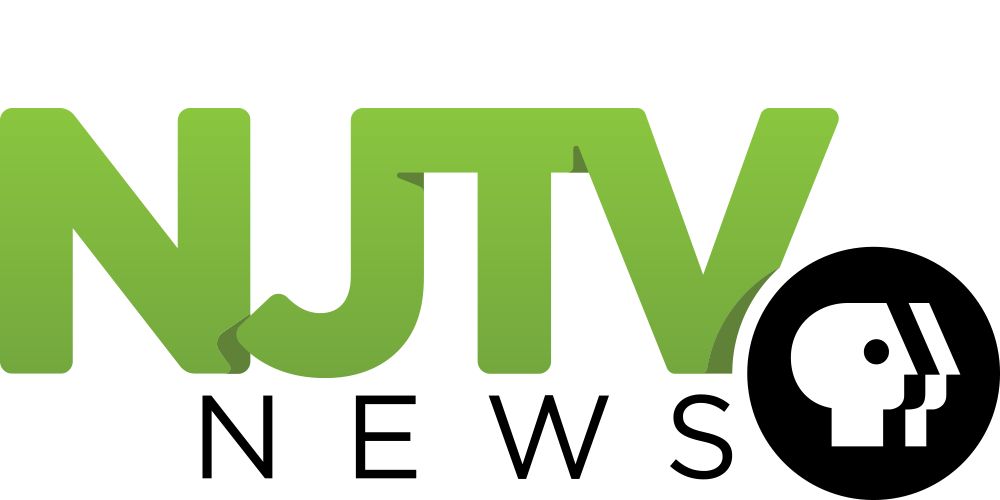 Image result for njtv logo
