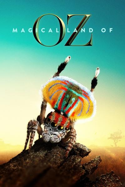Magical Land of Oz