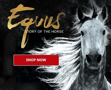 Equus DVD. Shop Now >