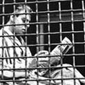 A Short History of Quarantine