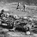 Casualties of the Civil War