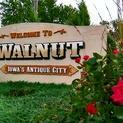 Antiquing in Walnut, IA