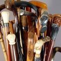 Collecting Walking Sticks and Canes