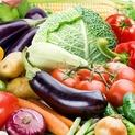 Discover the Evolution of Vegetarianism