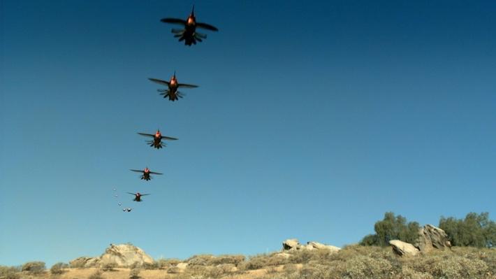 SuperNature -- Wild Flyers