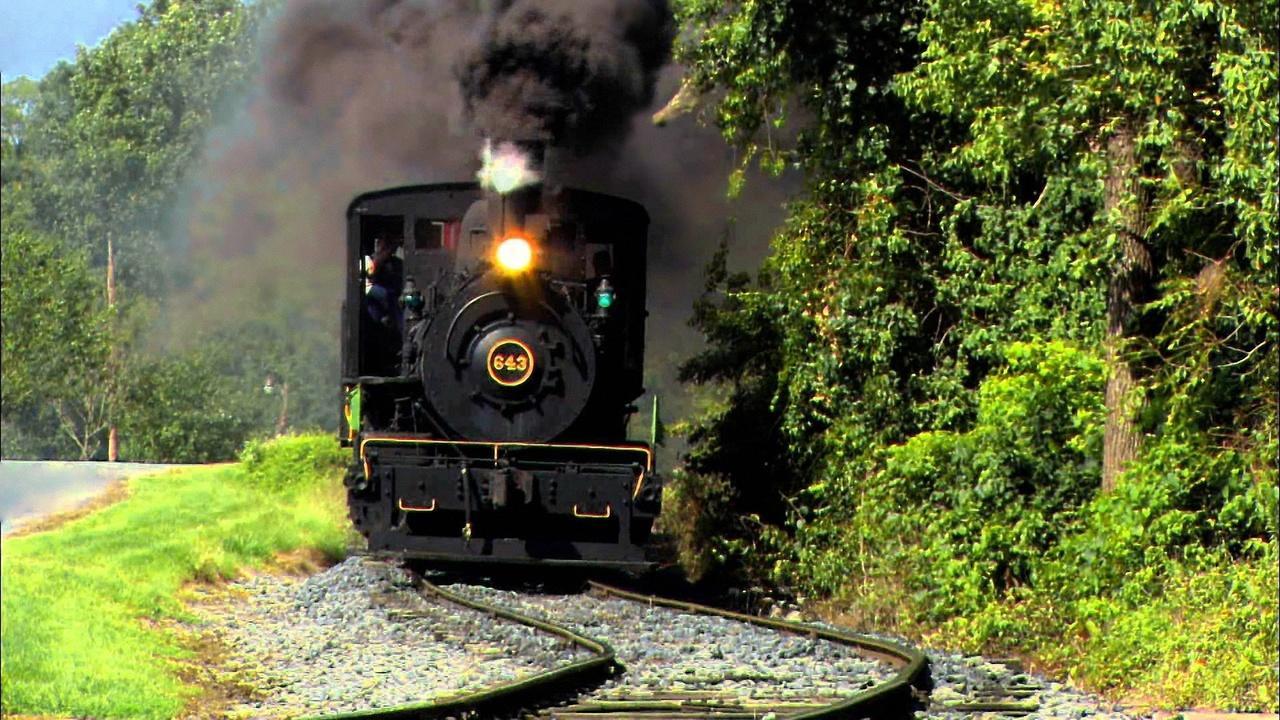 Tracks Ahead: Taltree Arboretum