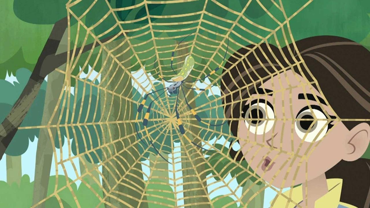 Wild Kratts: Secrets of the Spider's Web