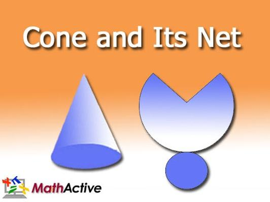 Cone and Its Net