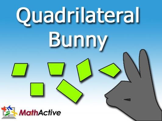 Quadrilateral Bunny