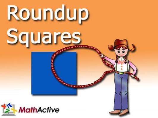 Roundup Squares