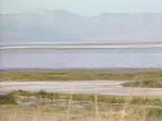 The Geography of Utah | The Great Salt Lake: Bear River Bird Refuge