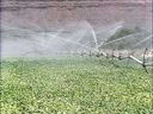 Water: Overhead Sprinklers