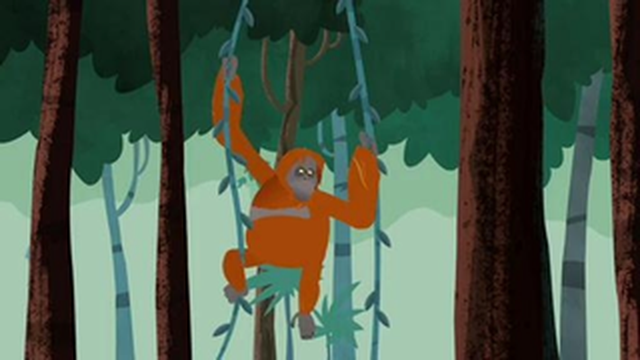 A Huge Orange Problem | Wild Kratts