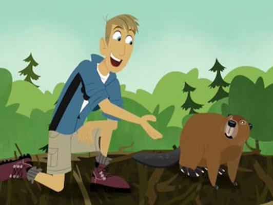 Ecosystems | Wild Kratts | PBS LearningMedia
