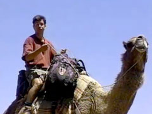 Camels in the Outback | Kratts Creatures