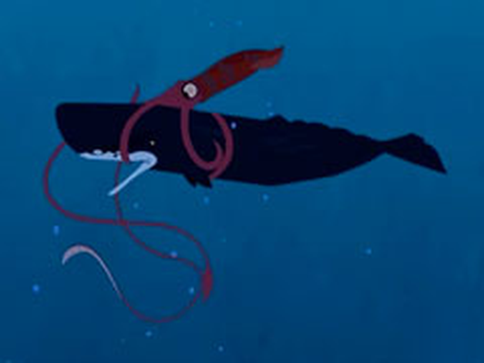 Sperm Whale vs. Giant Squid
