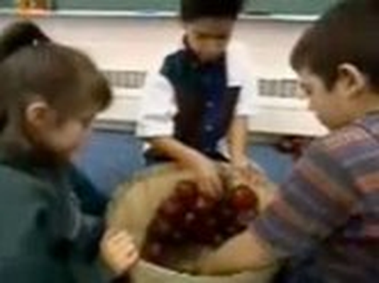 Number Sense and Computation: An Apple a Day | Video