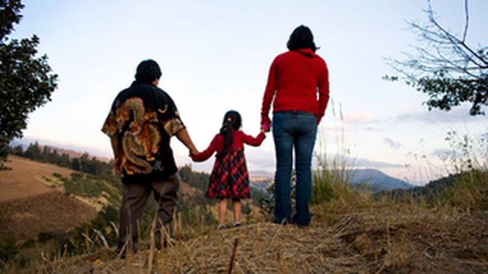 Sin País: U.S. Immigration Policy Analysis