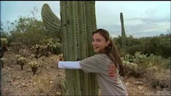 DragonflyTV | Cactus