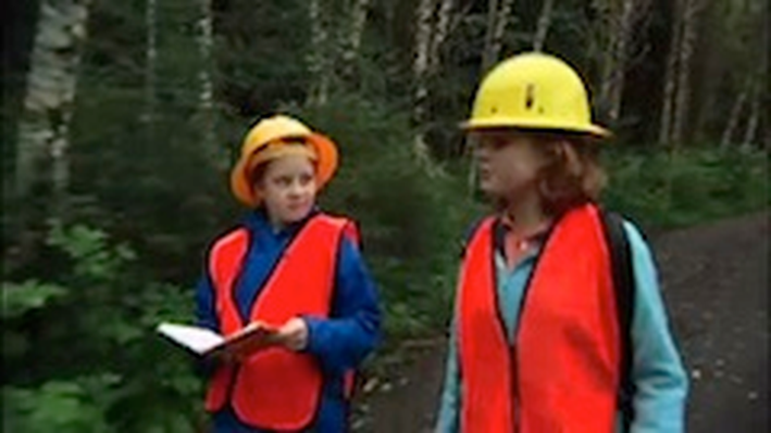 SciGirls en Español Activity: Bosque Lluvioso Templado (Temperate Rain Forest)