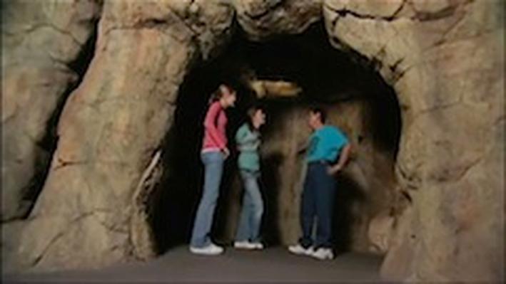 SciGirls en Español Activity: Golondrinas de Cueva (Cave Swallows)