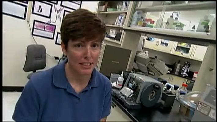 Scientist Profile: Biologist