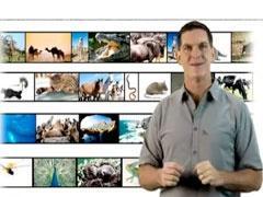 Watch: Dinosaur Train Ecosystems