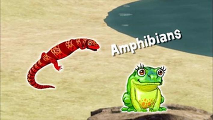 Dinosaur Discoveries: Amphibians | Dinosaur Train