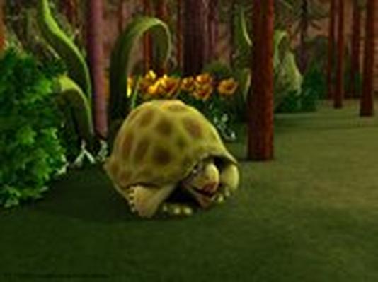 Dinosaur Train | Triassic Turtle