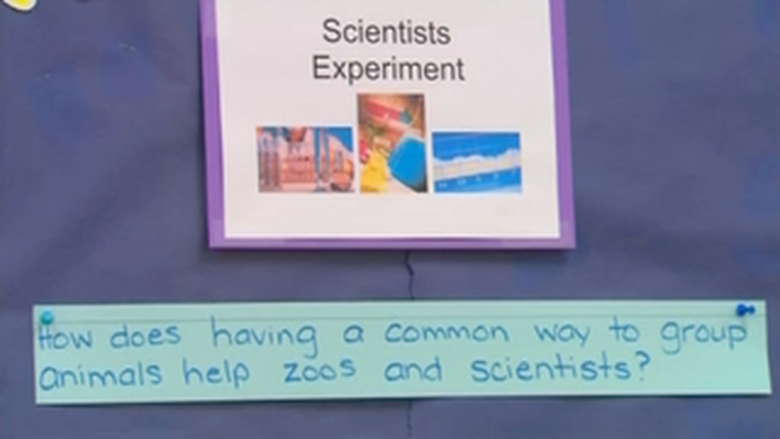 Scientific Inquiry: It All Begins With a Good Question | You at the Zoo