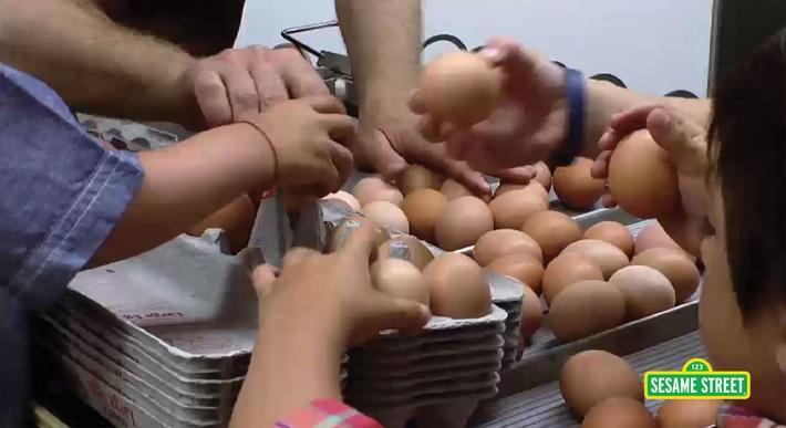 Stone Barns Egg Chore | Sesame Street