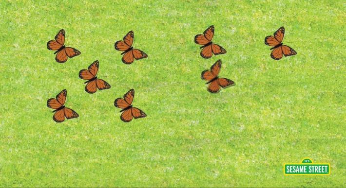 11 Butterflies | Sesame Street