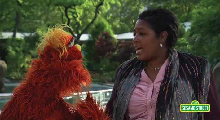 Word on the Street: Career with Murray | Sesame Street