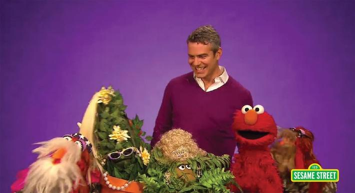 Andy Cohen: Popular | Sesame Street
