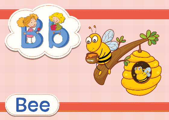 Vocabulary Cards - B for Bee | Clipart