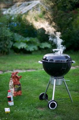 a Smoking Charcoal Grill in the Garden, Sweden | Earth's Resources