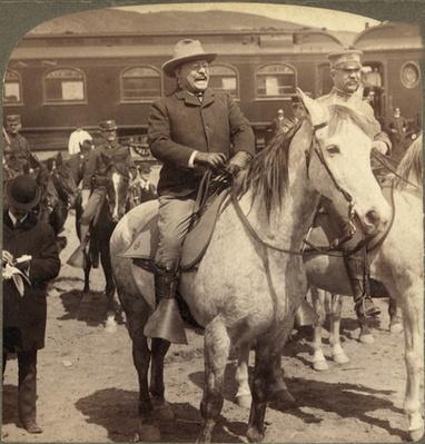 Theodore Roosevelt | Ken Burns: The National Parks