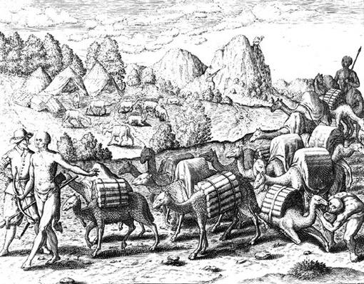 Pack Train of Llamas Laden with Silver from Potosi Mines of Peru, engraved by Theodore de Bry