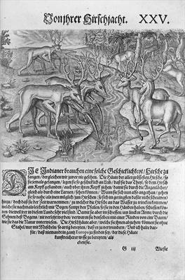 Florida Indians hunting deer while disguised under deerskins, from 'Americae Decima Pars' engraved by Theodor de Bry