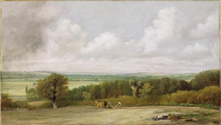Landscape: Ploughing Scene in Suffolk