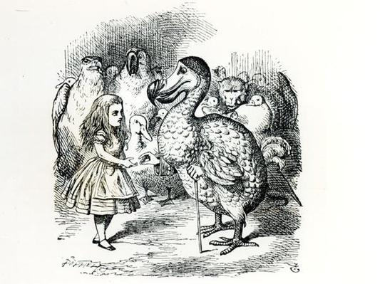 Alice meets the Dodo, illustration from 'Alice's Adventures in Wonderland', by Lewis Carroll, 1865