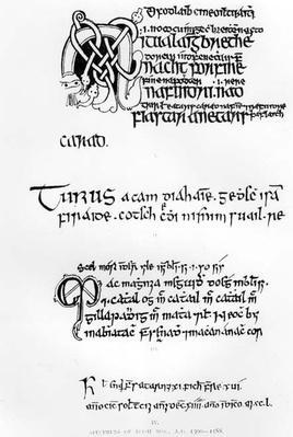Specimens of Irish Manuscripts, c.1300-1588