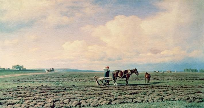 In the Field, 1872