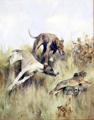 Coursing at Mayhill, 19th century