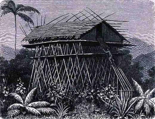 House in the Arfak village of Memiwa, New Guinea, from 'The History of Mankind', Vol.1, by Prof. Friedrich Ratzel, 1896