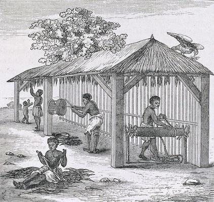Preparing Tobacco, from 'Santo Domingo Past and Present' by Samuel Hazard, pub. 1873