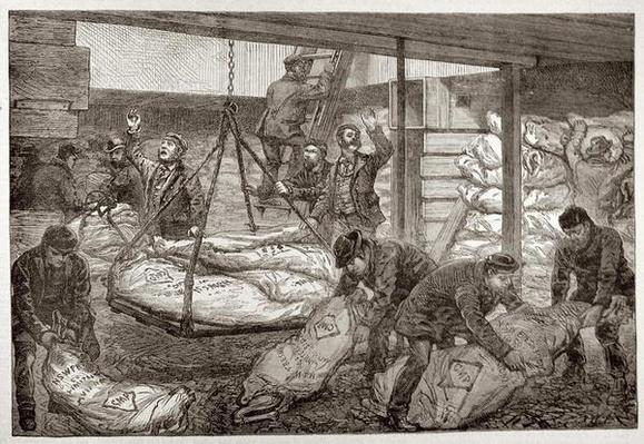 Landing Australian Frozen Meat from Sydney in the South West India Dock, Millwall, from 'The Illustrated London News', 19th November 1881