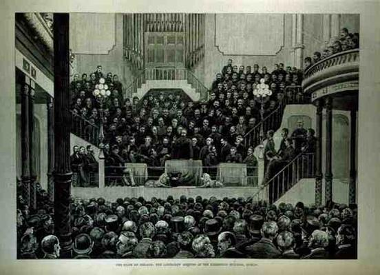 The State of Ireland: The Landlord's Meeting at the Exhibition Building, Dublin, from 'The Illustrated London News', 14th January 1882