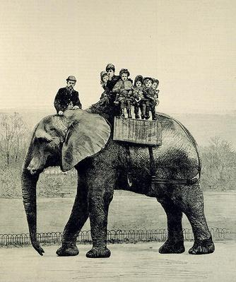 A Farewell Ride on Jumbo, from 'The Illustrated London News', 18th March 1882