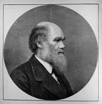 The Late Mr C. R. Darwin, FRS, LLD, from 'The Illustrated London News', 29th April 1882